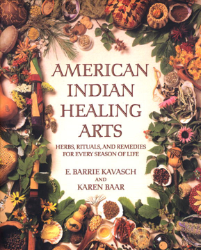 Bild på American Indian Healing Arts
