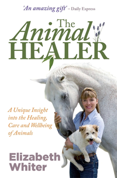 Bild på Animal healer - a unique insight into the healing, care and wellbeing of an