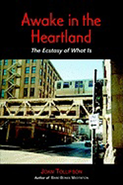 Bild på Awake In The Heartland: The Ecstasy Of What Is