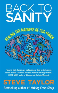 Bild på Back to sanity - healing the madness of our minds