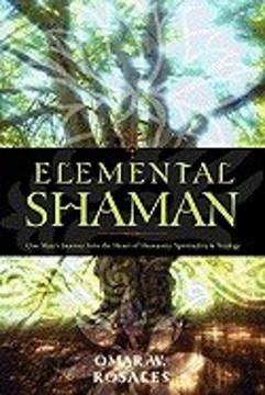 Bild på Elemental Shaman: One Man's Journey Into the Heart of Humanity, Spirituality & Ecology