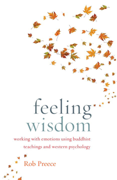Bild på Feeling Wisdom : Working with Emotions Using Buddhist Teachings and Western Psychology