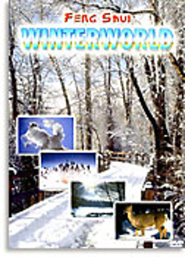Bild på Feng Shui - Winterworld (DVD)