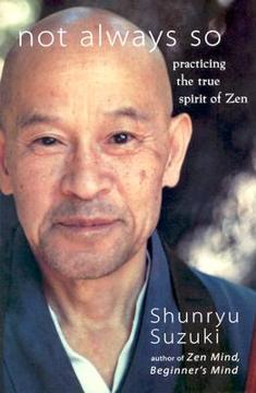 Bild på Not always so - practicing the true spirit of zen