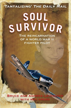 Bild på Soul survivor - the reincarnation of a world war ii fighter pilot