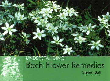 Bild på Understanding Bach Flower Remedies