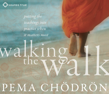 Bild på Walking the Walk : Putting the Teachings into Practice When It Matters Most
