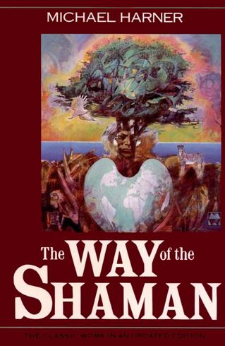 Bild på Way of the shaman