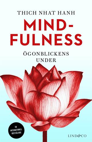 Bild på Mindfulness : ögonblickens under