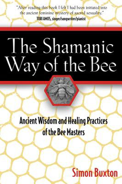 Bild på Shamanic way of the bee - ancient wisdom and healing practices of the bee m
