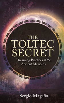 Bild på Toltec secret - dreaming practices of the ancient mexicans