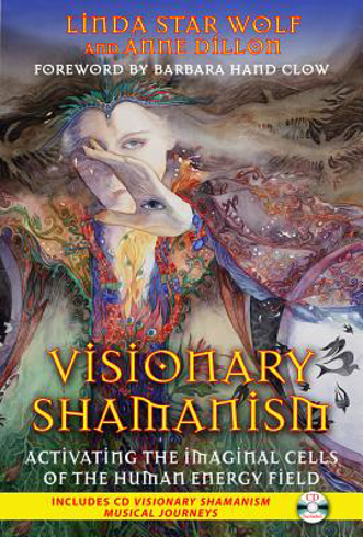 Bild på Visionary shamanism - activating the imaginal cells of the human energy fie