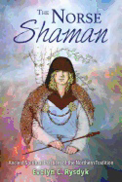 Bild på Norse shaman - ancient spiritual practices of the northern tradition